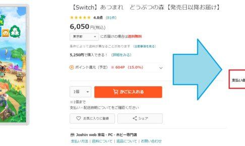 どうぶつの森5550円